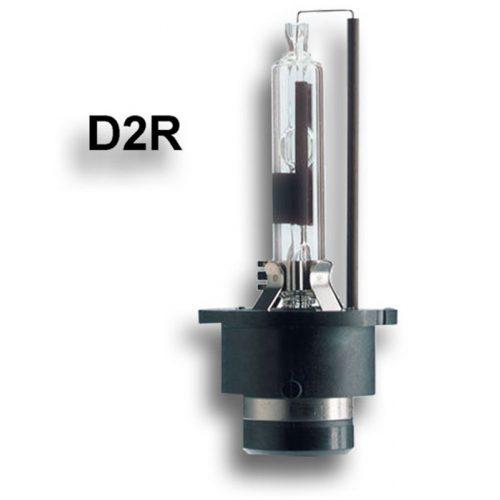 EXOD NP D2R 4300K 12V - Xenon izzó