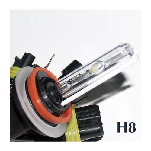 HID H8 4300K 12V - Xenon izzó
